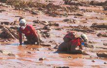 Tragédia em Brumadinho: 99 mortes confirmadas, 57 corpos identificados; 259 desaparecidos