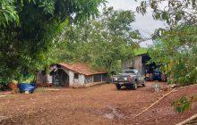 Ação integrada desmonta criadouro clandestino de pássaros exóticos em Capanema