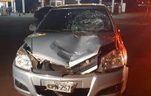 Veículo de Matelândia atropela, mata uma mulher na BR 277 e deixa homem gravemente ferido