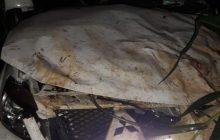 Idosa  de 78 anos fica ferida após capotar caminhonete na Curva do Cemitério em Santa Helena