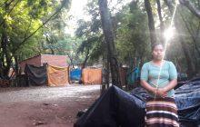 Vídeo; Em Santa Helena, após acidente com casal e filho na Curva do Ogregon, moradora faz pedido ao prefeito Zado