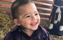 Criança de um ano morre após ser atropelada em pátio de empresa