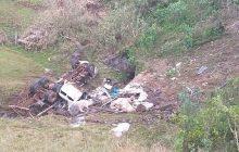 Oito bois morrem após caminhão que os transportava capotar na 'curva da morte'
