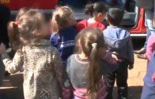 Abelhas invadem CMEI em Santa Helena e bombeiros negam apoio aos pais