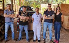 Polícia civil de Santa Helena incinera quase uma tonelada de drogas