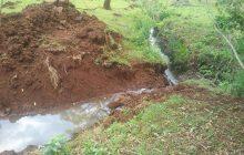 Polícia Ambiental constata desmatamento em área de preservação em São Miguel do Iguaçu