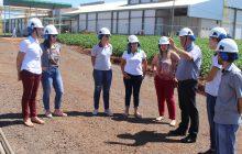 Comissão visita Friella para averiguação das obras de ampliação do frigorífico
