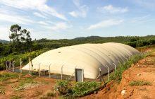 Prefeitura de Itaipulândia pretende subsidiar biodigestores aos suinocultores do município