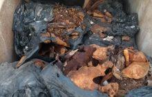 Vinte suspeitos de remover cadáveres e vender terrenos ilegalmente de cemitério são indiciados por concussão e vilipêndio de cadáver