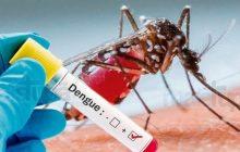 Alerta: Confirmados os primeiros casos de dengue em Missal