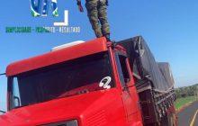 BPFRON na Operação Hórus apreende caminhão carregado com cigarros em Santa Helena
