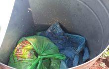 Moradora de Santa Helena denuncia mau uso de lixeiras no bairro onde mora