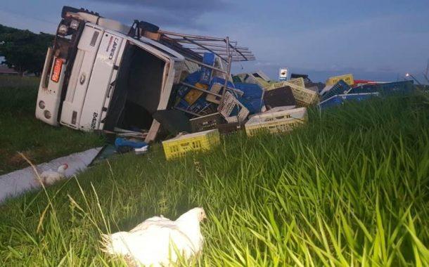 Caminhão com carga de frango tomba na BR-467