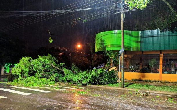 Temporal destelha 44 casas e afeta cerca de 335 pessoas em Cascavel