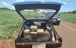 Polícia de Entre Rios do Oeste apreende quase meia tonelada de maconha em Santa Helena