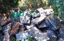 Mais de meia tonelada de maconha é apreendida em Entre Rios do Oeste