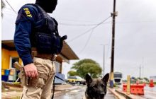 Operação reúne forças de segurança no combate ao tráfico de drogas em Foz e região