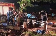 Vítima após veículo colidir violentamente contra uma árvore
